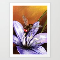 Fly on flower 10 Art Print