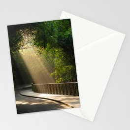 Light rays shining through a dense bamboo forest - Landscape Photography Stationery Cards