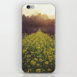 Vineyard Sunset iPhone Skin