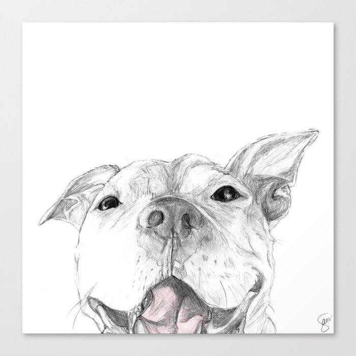 Whaddup :: A Pit Bull Smile Leinwanddruck