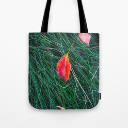closeup orange leaves on the green grass field Tote Bag