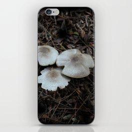 Beautiful Mushrooms iPhone Skin
