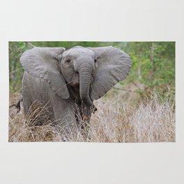 Young elephant - Africa wildlife Rug