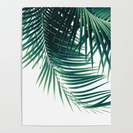 Palm Leaves Green Vibes #4 #tropical #decor #art #society6 Poster