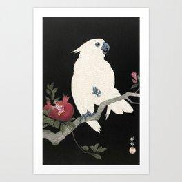 Cockatoo and Pomegranate Japanese Woodcut Art Print