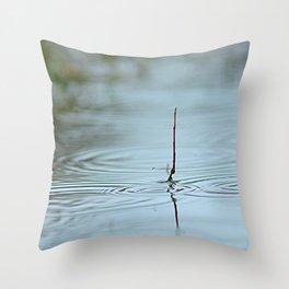 Quiet repose Throw Pillow