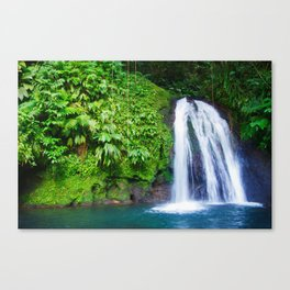 Ecrevisses Waterfall - Guadeloupe Canvas Print