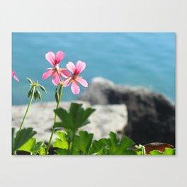 Lakeside Flowers I Canvas Print