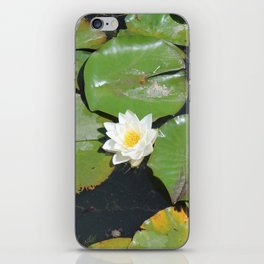 White Water-Lily iPhone Skin