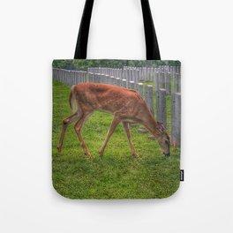 Cemetery deer Tote Bag