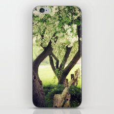 Spring Song iPhone & iPod Skin