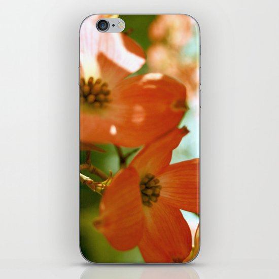 A Spring Day iPhone & iPod Skin