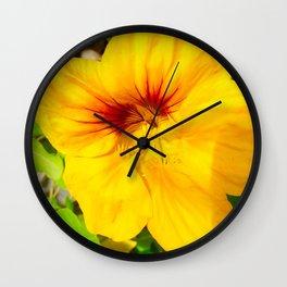 Beautifully edible Wall Clock