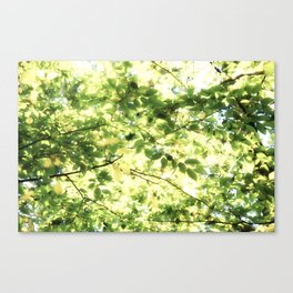 Bright Day-green leaves Canvas Print