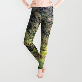 Earthy Mountain Stream // Hiking Bliss Incredible Views of the Beautiful Mountainscape Leggings