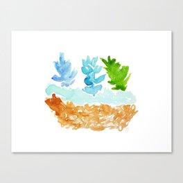 teco verde Canvas Print
