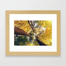 The tall one Framed Art Print