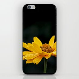 Bright Yellow And Black iPhone Skin
