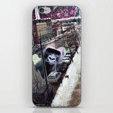 Potsdam Gorilla iPhone & iPod Skin