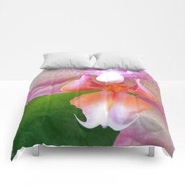Jenn's Orchid Comforters