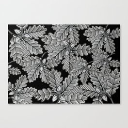 Acorns Canvas Print