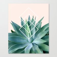 Agave geometrics - peach Canvas Print