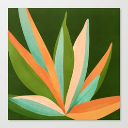 Colorful Agave / Painted Cactus Illustration Canvas Print