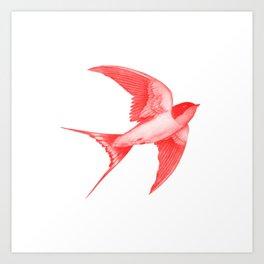 Barn Swallow - red option Art Print