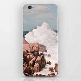 Kiss of the Sea II iPhone Skin