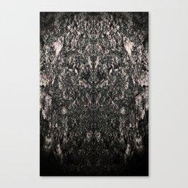 Photo Study #5 - Kvltic Canvas Print