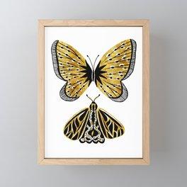 Golden Butterfly & Moth Framed Mini Art Print