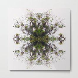 Epiphyte Kaleidoscope Metal Print