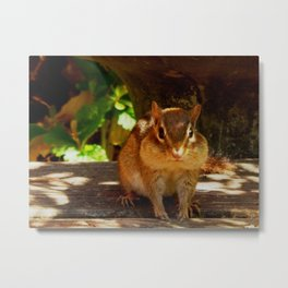 Chippy #2 Metal Print