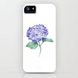 Hortensia iPhone Case