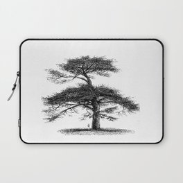 Big tree Laptop Sleeve
