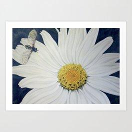 Hoverfly on a Gerbera Daisy Art Print