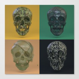 Skull Collection 04 Canvas Print