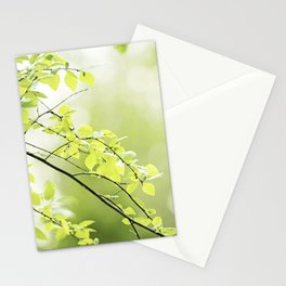 Green Nature Photography, Leaves Tree Branches Photo, Spring Leaf Trees Branch Botanical Stationery Cards