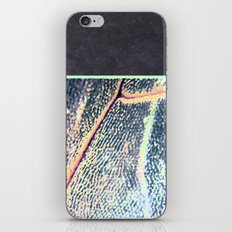 concrete.dragOnfly iPhone & iPod Skin