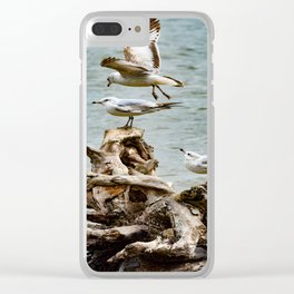 Two On - One Off Clear iPhone Case