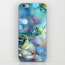 Rainbow Moss Drops iPhone Skin