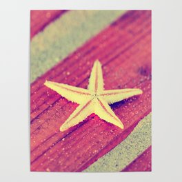 Stars and Stripes on the beach Poster