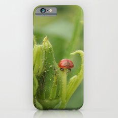 Fly Away Home iPhone 6s Slim Case