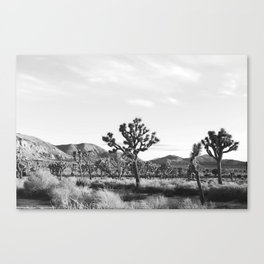 Jtree Canvas Print