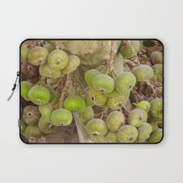 Figs Laptop Sleeve