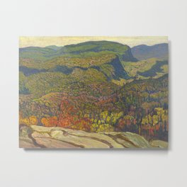 J.E.H. McDonald Forest Wilderness, 1921, McMichael Canadian Art Collection Metal Print