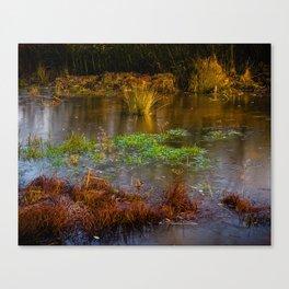 Kintbury Newt Ponds Canvas Print