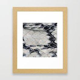 Snake skin Framed Art Print