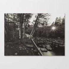 vintage landscape Canvas Print