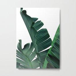 Tropical Leaf Print, Botanical Wall Art Print, Banana Leaf Print ,Tropical Decor Metal Print